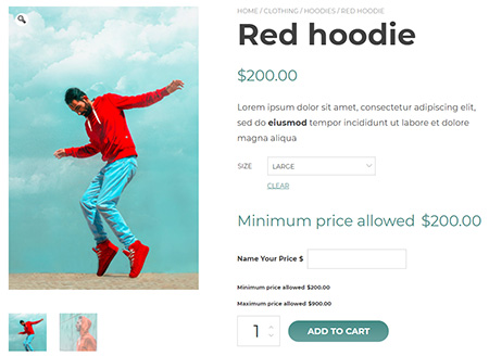 Yith-WooCommerce-Name-Your-Price