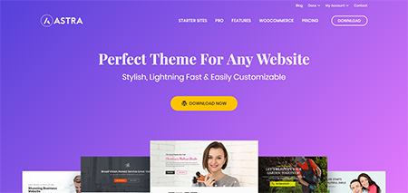 12 Best LearnDash WordPress Themes 2019 | Frip in