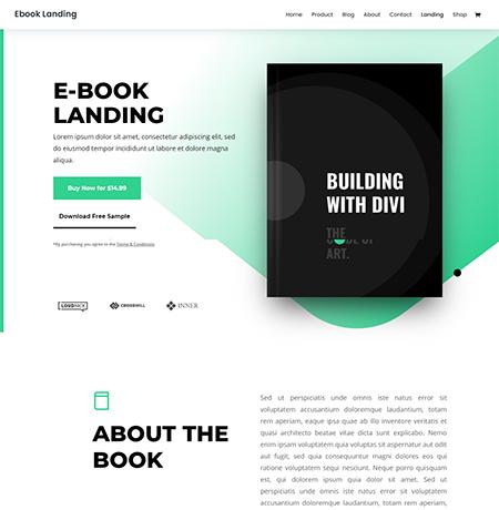 divi-ebook-wordpress-theme