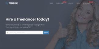 project-wordpress-freelancer-theme