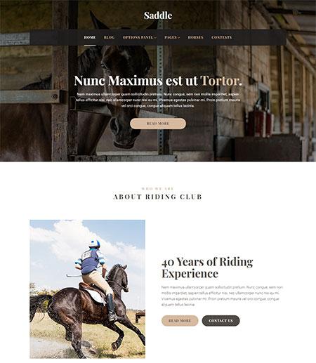 saddle-wordpress-theme
