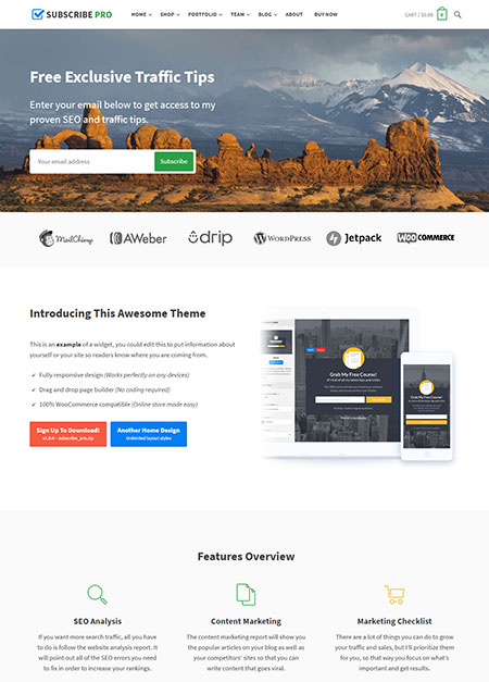 subscribe-multipurpose-wordpress-theme